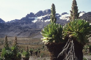 Picture of the summit of Mount Kenya to illustrate the challenge of discipling the nations